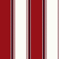 KT Exclusive Nantucket Stripes CS81401