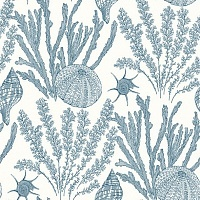 Paper & Ink Coastal Chic СO 11802
