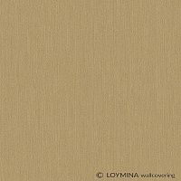 Loymina Amber salon AS5 004/3