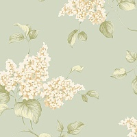 Aura English Florals G34318